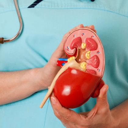 Норма холестерина в моче и причины его повышения