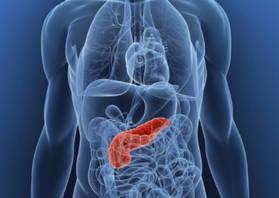 УЗИ поджелудочной железы при сахарном диабете: изменение органа при панкреатите